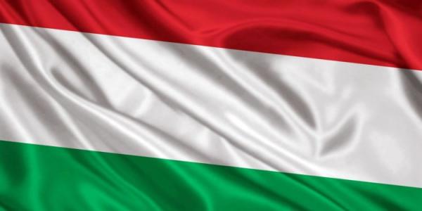 Magyar munkaközösség