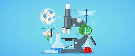 Biológia-kémia-földrajz-testnevelés munkaközösség